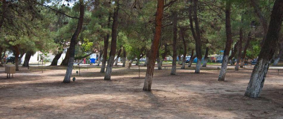 Πάρκο πόλη να συνδέσετε